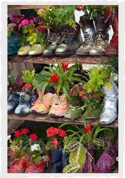 Damen Schuhe bepflanzen