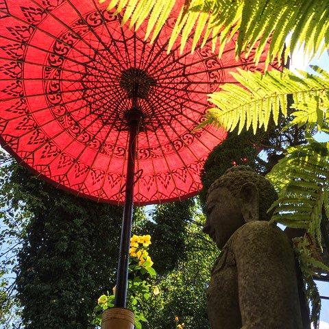 Asiatischer-Sonnenschirm-rot-Moench