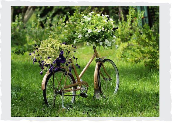 Fahrrad-bepflanzen
