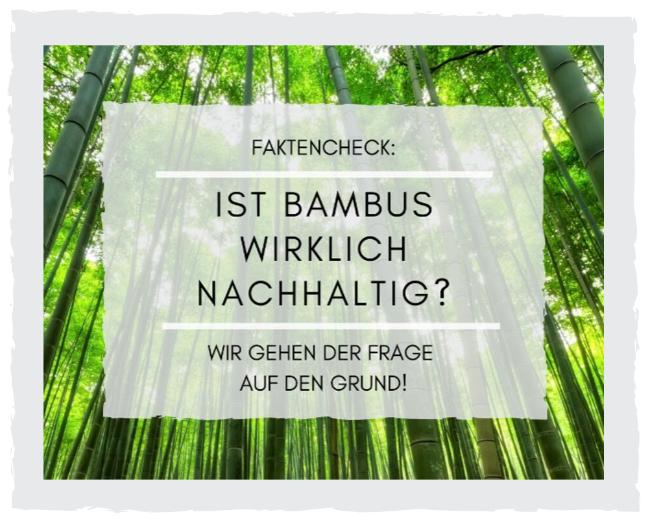 Ist_Bambus_wirklich_nachhaltig