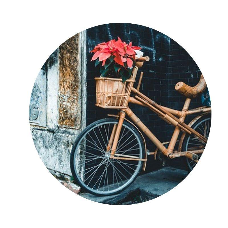 Fahrrad_aus_bambus