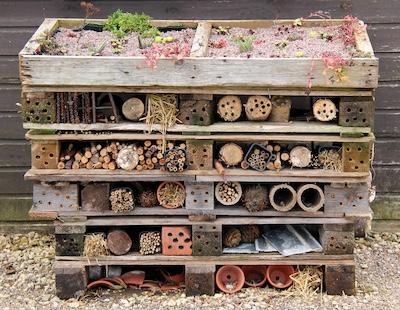 Insektenhotels So Beherbergen Sie Berufsbestauber In Ihrem Garten