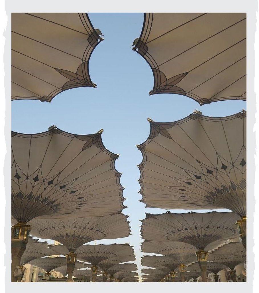 Schirme-in-Medina