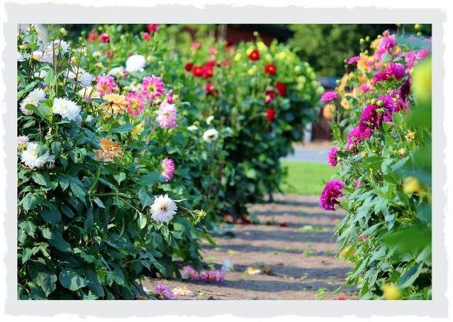 Blumenweg