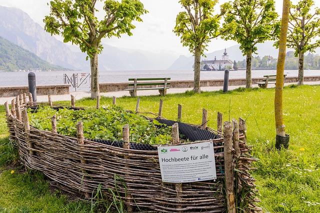 urban-gardening-park-hochbeet