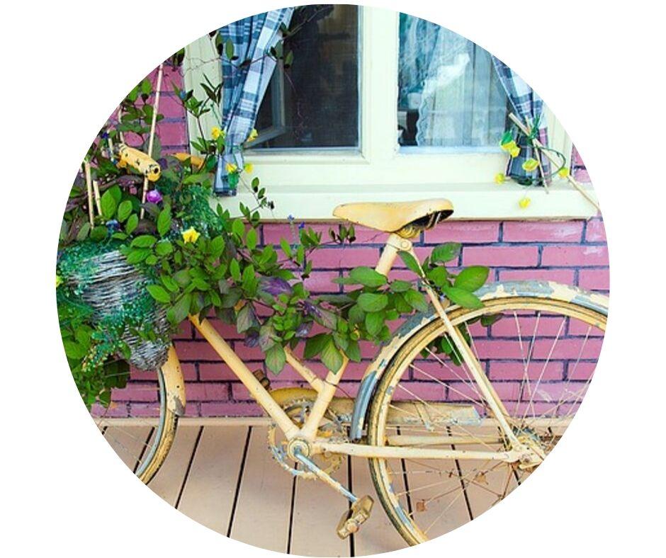 Fahrrad_Natur