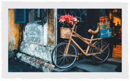 Bambus_Fahrrad