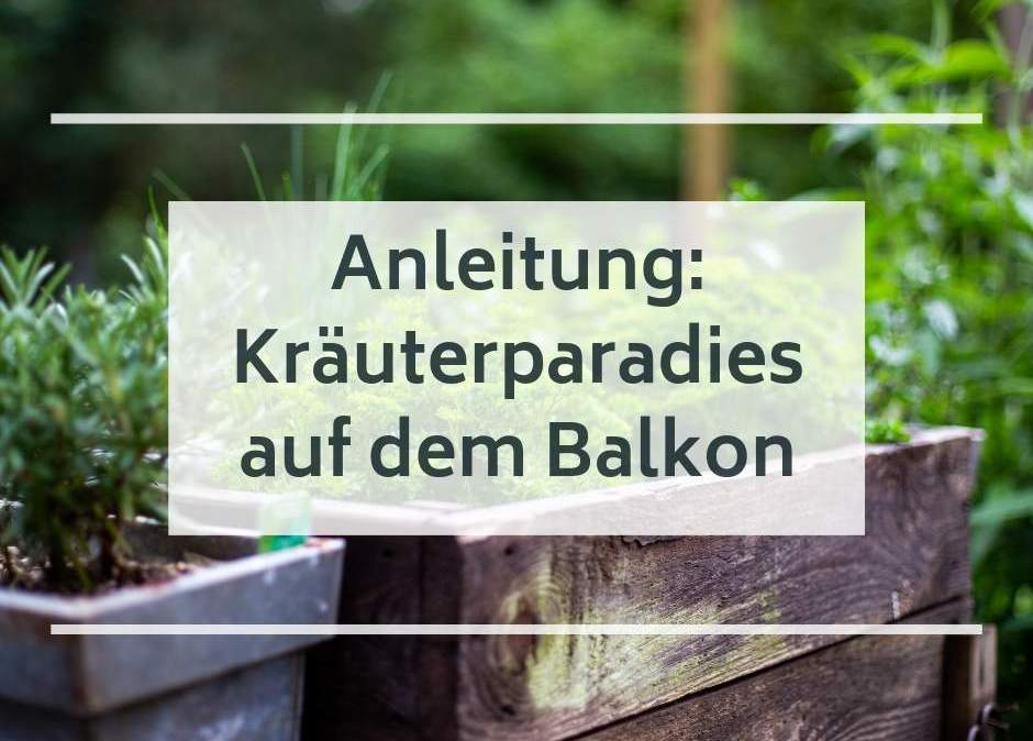 Anleitung_Kraeuterparadies-Auf-Dem-Balkon