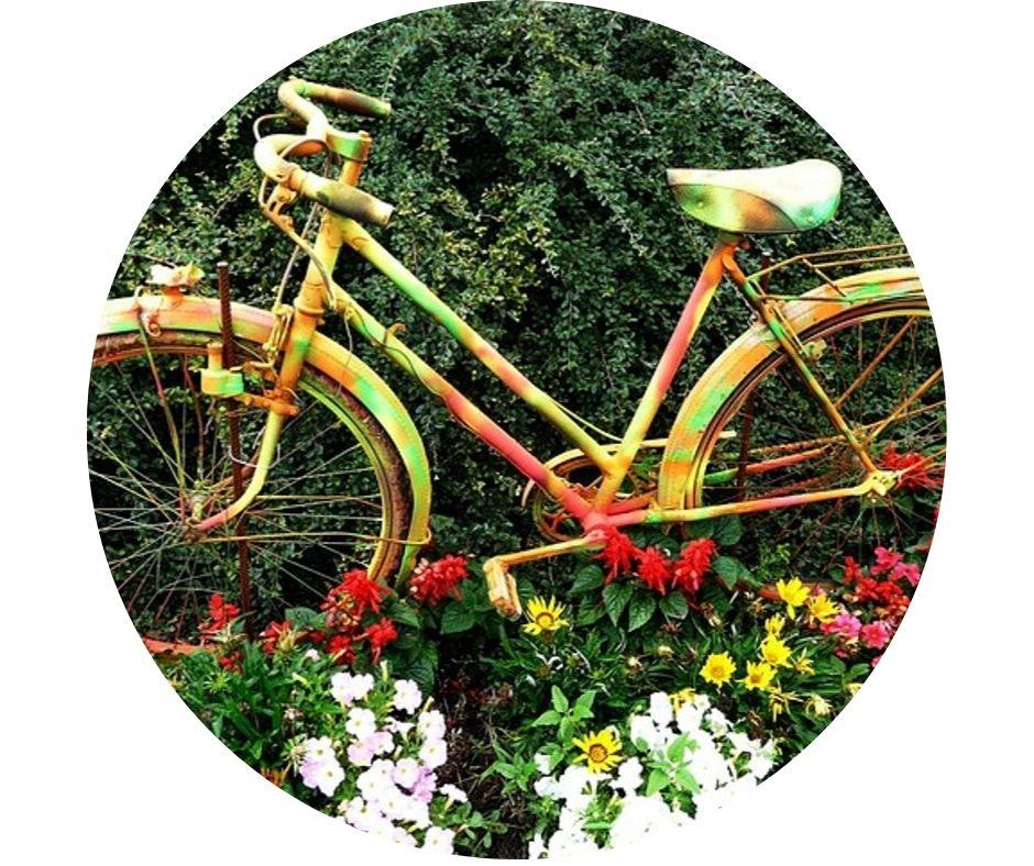 Fahrrad_im_Blumenbeet