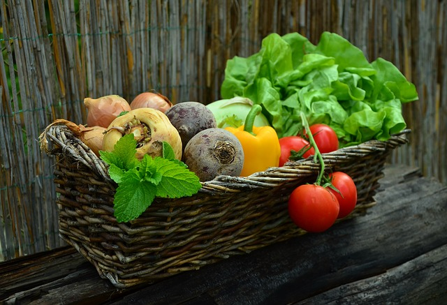 urban-gardening-salat-anbauen