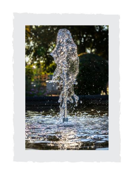 Springbrunnen-Wasserstrahl