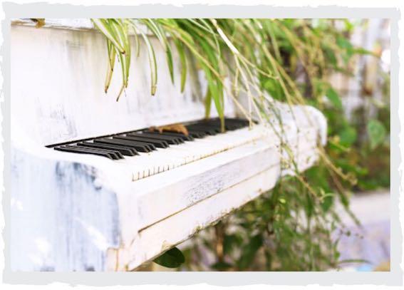 Klavier-bepflanzen