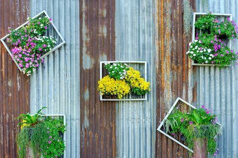 vertikale-garten-bilderrahmen