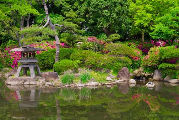 Japanischer-Teich