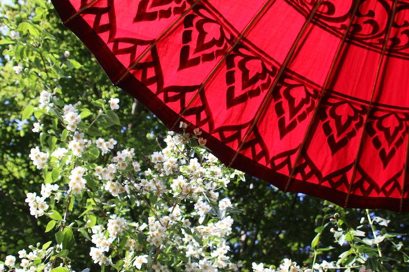 Sonnenschirm_Mandalay_von_unten